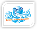 We created this logo for mr snappy's